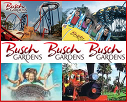 Image Result For Busch Gardens Tampa Ticket Office