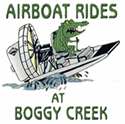 Picture of  Boggy Creek Airboat Rides Ticket